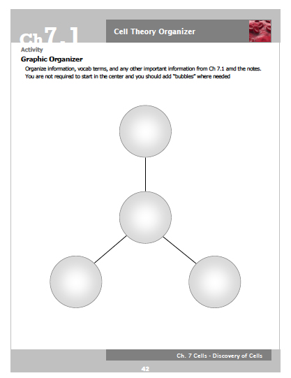 Example of a simple graphic organizer from our cells unit